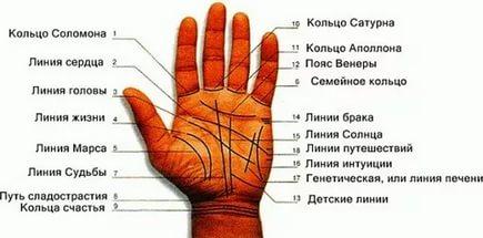 Линии на руке: на левой и правой руке, советы ирекомендации