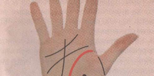 Линия жизни на руке – расшифровка значений