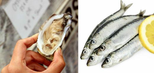 11 самых питательных продуктов на планете